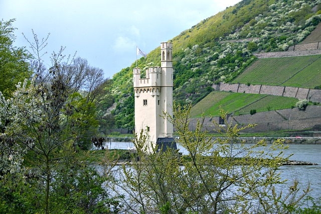 Camping Bingen am Rhein