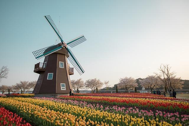 Camping in den Niederlanden