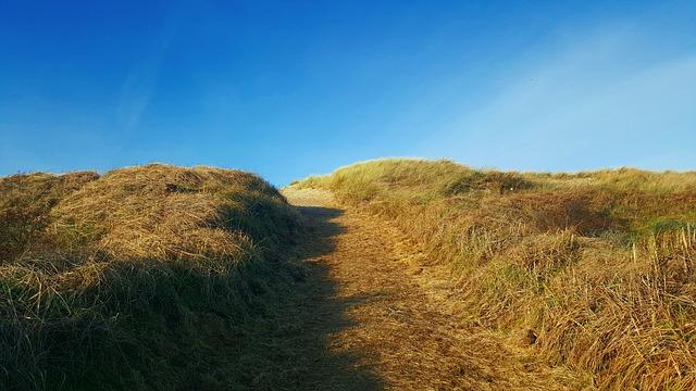 Dünencamping in de Koog auf Texel