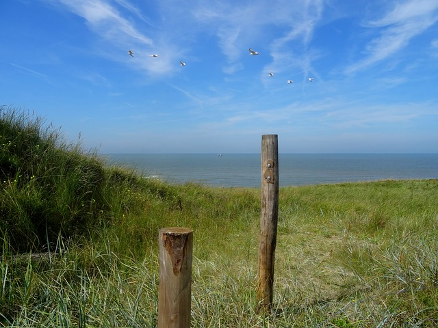 Camping an der Nordsee in Nordholland