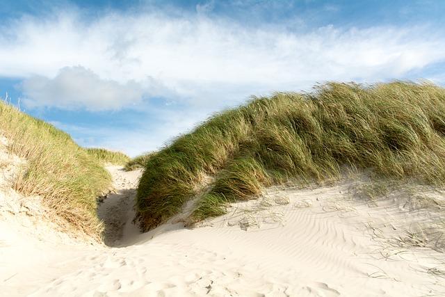 Henne Strand Camping in Dänemark